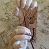 The Language of Hands,nature art